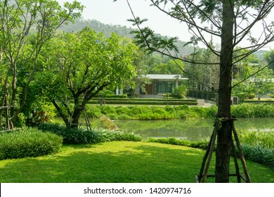 Fresh green grass smooth lawn as a carpet with curve form of bush, trees on the background, good maintenance lanscapes in a garden beside a lake under shading, cloudy sky and morning sunlight