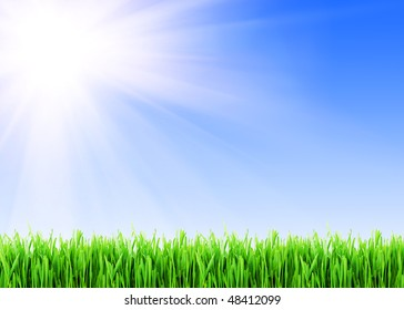 Fresh green grass under blue sky