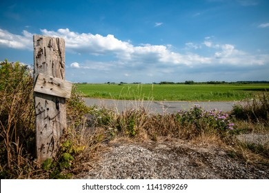 Fresh green grassland with white clouds and blue sky. Old vintage wooden pile of fence with wild flowers and oudoor asphalt road