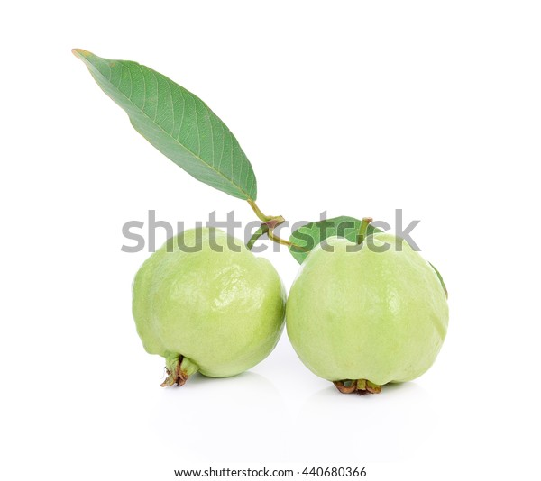 the Fresh green Guava fruit on white background.