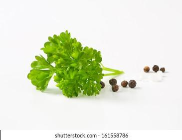 Fresh green herbs on white background