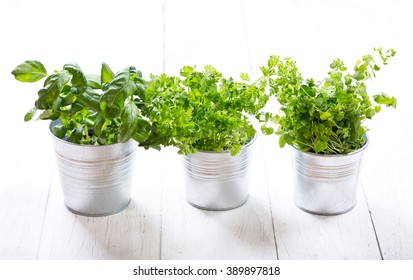 fresh green herbs in pots on a wooden table
