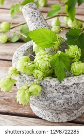 Fresh green hop and mortar