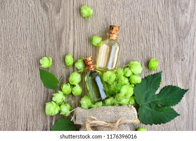 Fresh green hops (Humulus) with medicinal plant extract in glass bottles on wooden background