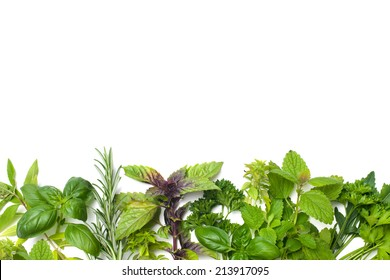 Fresh green kitchen herbs isolated over white background