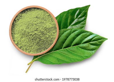 Fresh green Kratom leaf ( Mitragyna speciosa ) with kratom powder inwooden bowl isolated on white background. Top view. Flat lay.