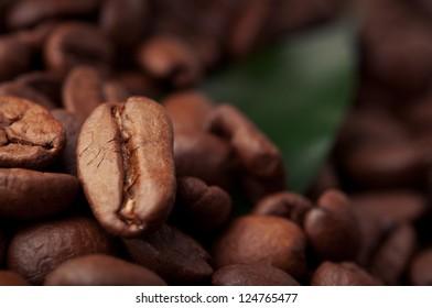 fresh green leaf and coffee beans