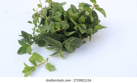 fresh green leaf mint, isolated on a white background