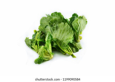 Fresh green leaves cabbage isolated on white background / Organic vegetable