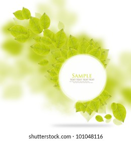 Fresh green leaves circle image border with space for text