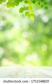 Frische grüne Blätter, Natur mit Bokeh auf leerem Holztisch-Hintergrund für Produktanzeigevorlage und Kopienraum als natürliche Grünflächen