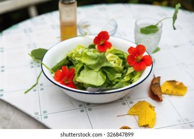 Fresh green lettuce with eatable flower (nasturtium) and autumn yellow leaf on white garden table