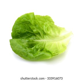 Fresh green lettuce leafs isolated on white background