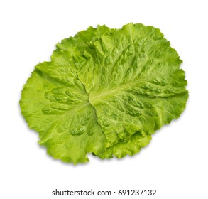 Fresh Green Lettuce Salad Leaves Isolated on White Background. Clipping paths. Top view. Shadowless