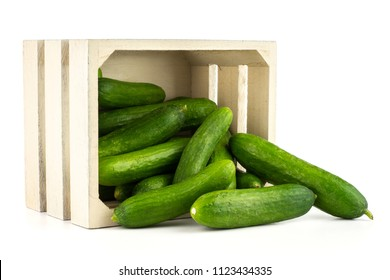 Fresh green mini cucumbers out a wooden box isolated on white background