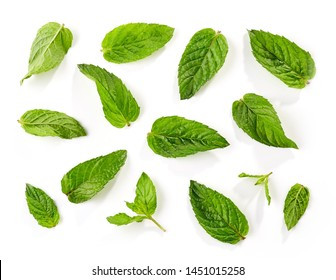 fresh green mint leaves background isolated on white