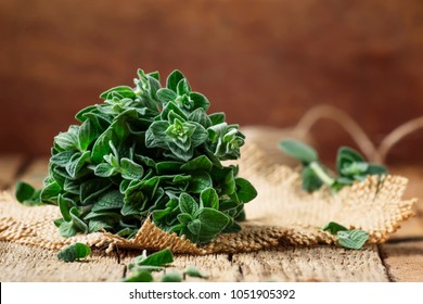 Fresh green oregano or Origanum vulgare in a beam, vintage wood background, selective focus