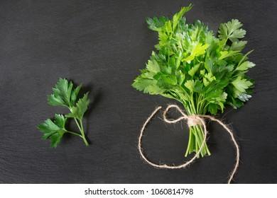 Fresh green parsley in bunch on black slate background. Copy space.