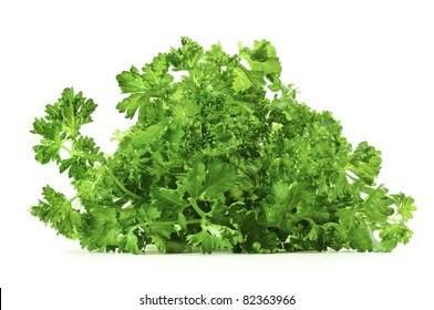Fresh green parsley isolated on white background