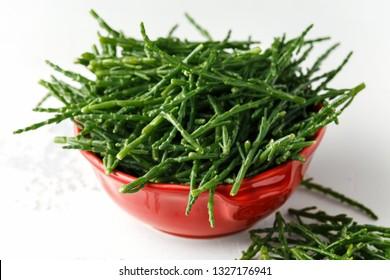 Fresh green raw samphire in red bowl