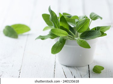 Fresh green sage on the wooden table, selective focus
