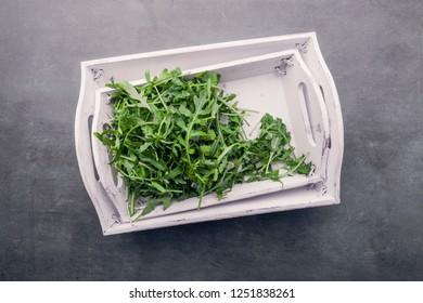 fresh green salad arugula rucola on a  White background shabby