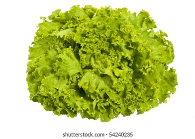 Fresh green salad - lettuce , closeup,  isolated