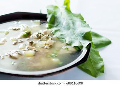 A fresh green soup with spinach sorrel egg potato