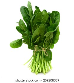 fresh green spinach tied on white background