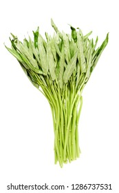 Fresh  green water spinach , chinese spinach or morning glory  vegtable on isolate white background and clipping path, vegetable full with vitamin and nutrition mostly special menu in asia kitchen.