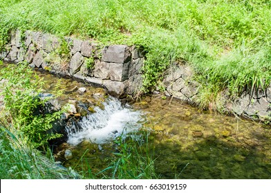 Fresh Green and Waterway