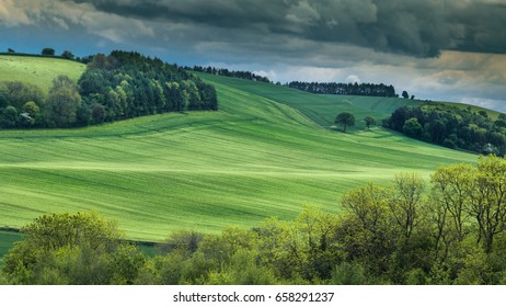 Fresh Green Wheat Field of Shropshire Hills in UK