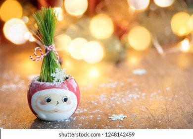 Fresh Green wheat in Santa cup with Christmas lights and decoration on background