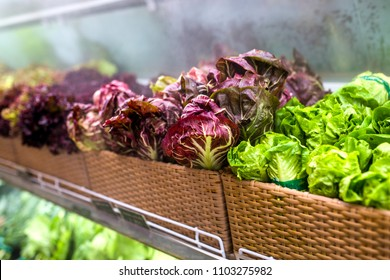 fresh greens and vegetables in a store on the shelf, a supermarket hypermarket of healthy food