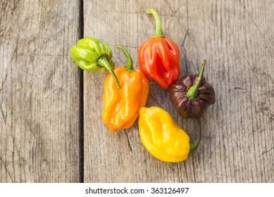 Fresh habanero peppers, yellow, chocolate, red, green