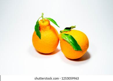 fresh hallabong orange fruit