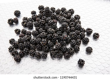 Fresh Hand Picked Blackberries on a silver pattened tray
