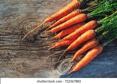 Fresh Harvested Carrot on Wooden Table in Garden. Vegetables Vitamins Keratin. Natural Organic Carrot lies on Wooden background Top View Flat Lay. Rustic Style. Country Village Agriculture concepts