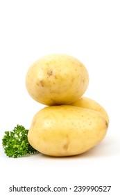 Fresh harvested potatoes