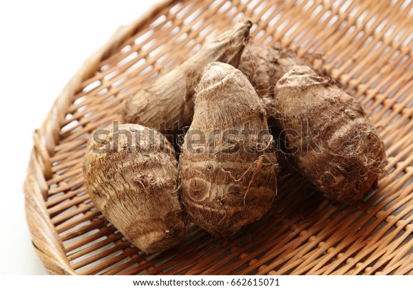 Fresh harvested, Satoimo potatoes.(taro, taro root).