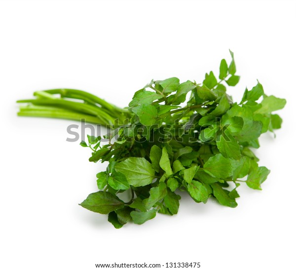 Fresh harvested watercress isolated on pure white