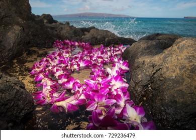 Fresh Hawaiian Lei at an ocean beach