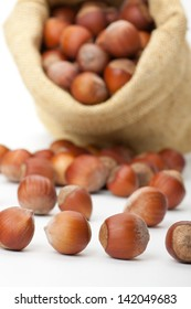 fresh hazelnuts in a bag on white background