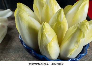 Fresh and healthy Chicory (witloof) Salad on a plate. Dietary menu.