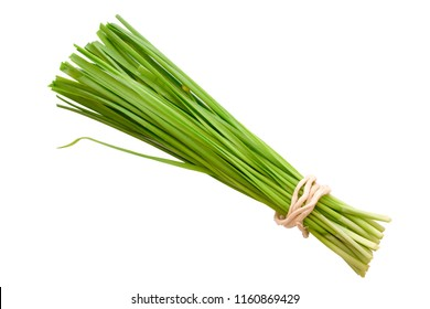 Fresh healthy organic green vegetable garlic chives, chinese chive bunch, green herb isolated on white background.