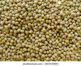 fresh and healthy organic soybeans