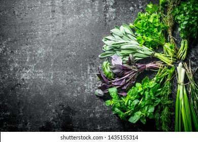 Fresh herbs cut in the home garden. On dark rustic background