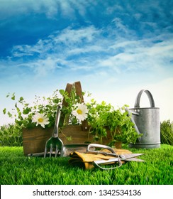 Fresh herbs and flowers with garden tools in the grass