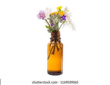 Fresh herbs and flowers in a medical bottle. Fresh herbs in a medical bottle.