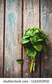 Fresh herbs. Mint herbs in rustic setting